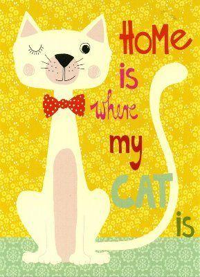WENDEKREIS Home is where my cat is Postkarte
