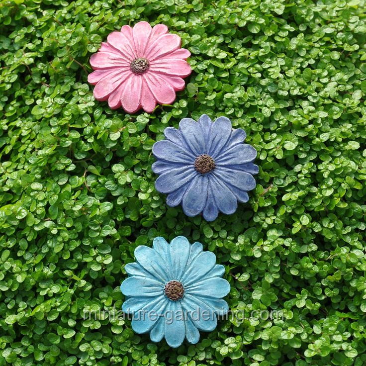 1000 images about mini garden hardscape on pinterest for Nautilus garden designs