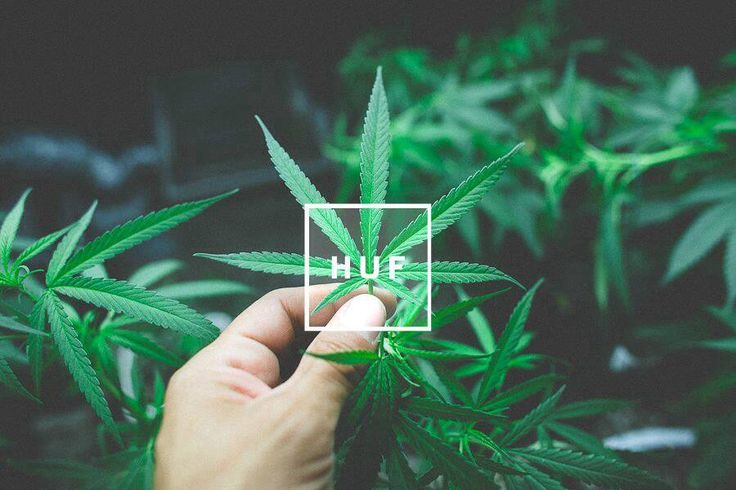 huf wallpaper ipad iphone ipod huf pinterest