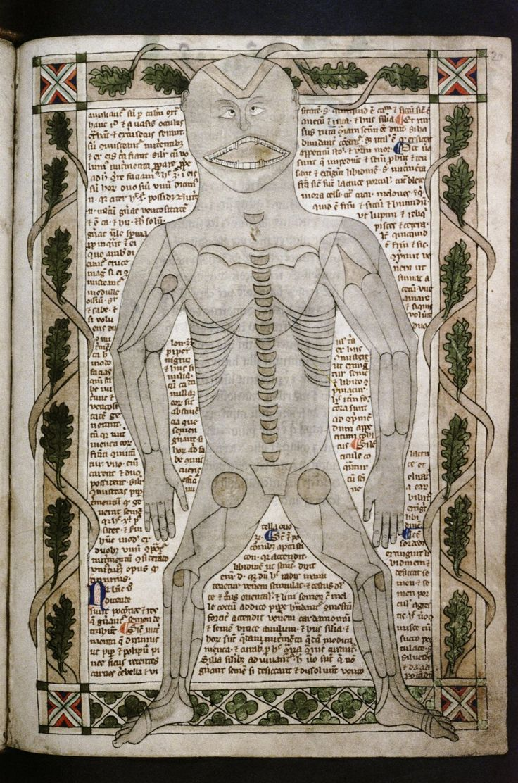 "Bodleian, MS. Ashmole 399, f.020r. Treatise on the human body. England, c.1292. ""Diagram of body showing bones; including dental chart."""