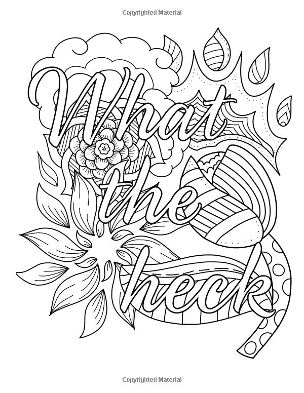 granny swears an adult coloring book with swears grannies would say swear word coloring