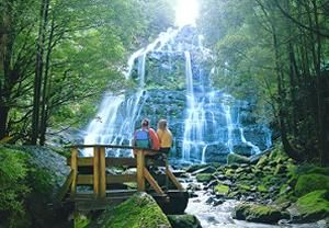 Parks & Wildlife Service - Nelson Falls