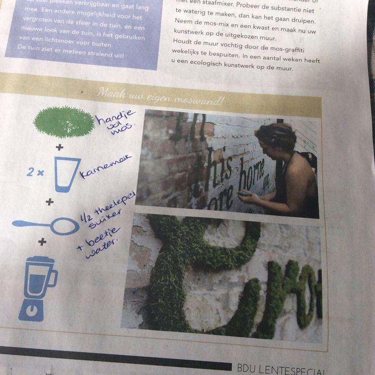 Leuk idee voor op je tuinmuur!