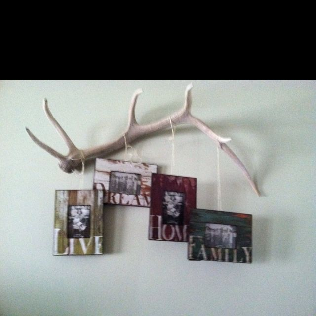 One of my husbands elk sheds. Putting it to good use. Found the barnyard frames at bb&b and just attached the frames with twine. Going for more of a rustic look .