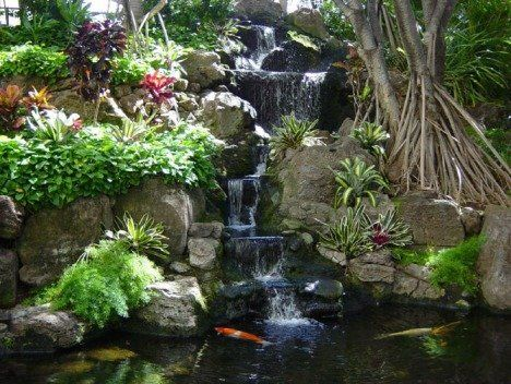 27 Best Images About Ponds On Pinterest Backyards