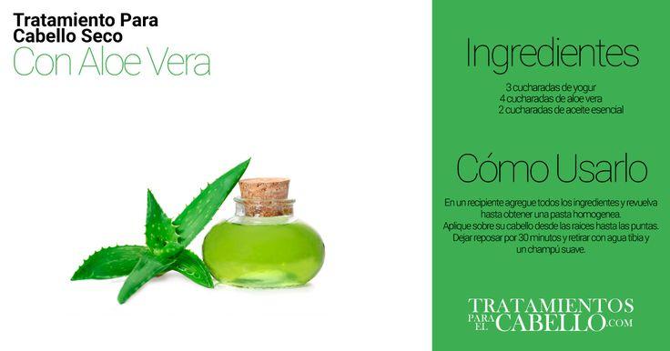 Mascarilla de Aloe Vera | Los Mejores 20 Tratamientos Caseros Para El Cabello Seco