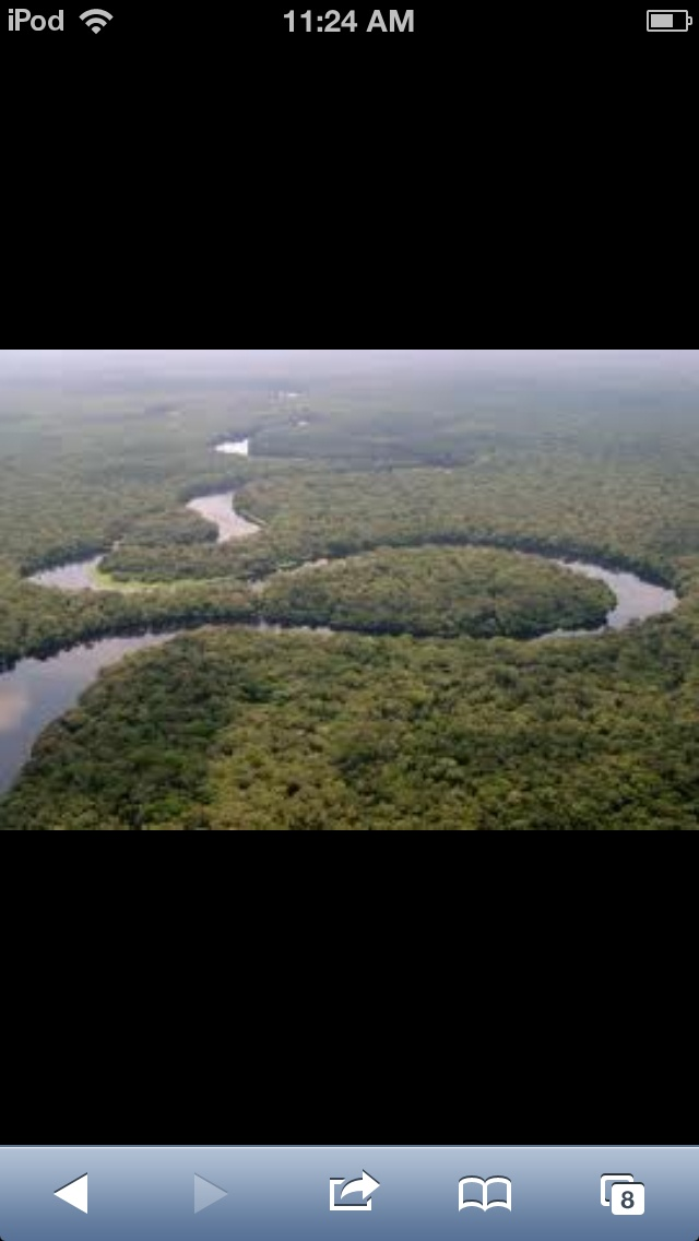 This is the Congo Basin, near the Atlantic Ocean and in the Great Africa Rift
