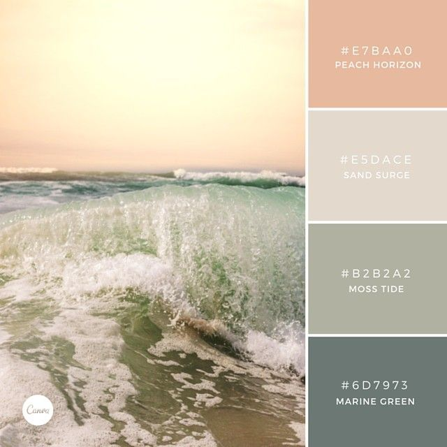 Vineyard room - peach, entryway - marine green, dining room - moss, kitchen/bar space cream.  Check out more ideas on branding and how to grow your blog traffic at our site! Photo credit: Canva. Our #1 graphics tool!