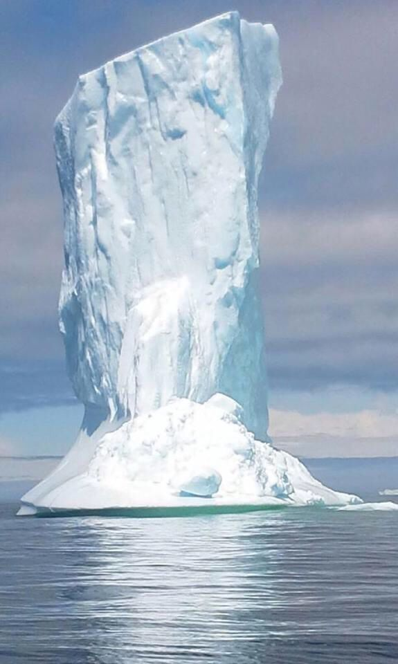 Iceberg in Trinity,NL - this is a sample of the natural wonders right off our shores in 2014!