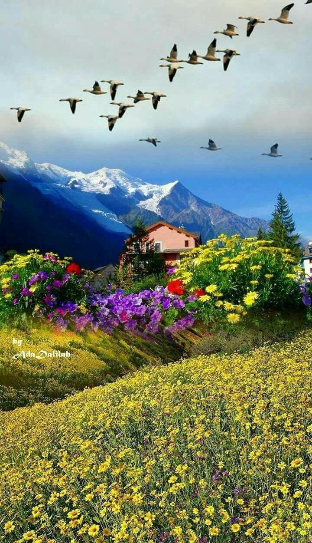 Frumos Peisajul Bellissimo Paesaggio Nel 2019 Paesaggi