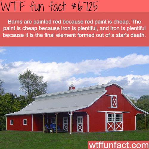 1433 Best Images About FACTS! On Pinterest