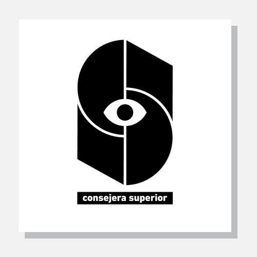 Consejera Superior 2013, logos  tomas dintrans, chile