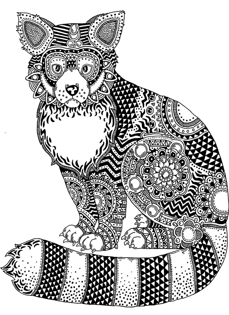 red panda zentangle pen and ink on illustration board janelle dimmett 2016