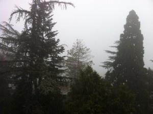 Hoy os pregunto si… aún persiste la niebla...  Para ser las horas que son tenemos una niebla muy persistente en Madrid…   ¿Persiste tu niebla interior bien entrada la mañana? ¿Qué son de los propósitos de año nuevo? ¿Sigues con ellos después de una semana? ¿Persigues tus Sueños?  Estamos aún en las primeras horas del día… Aprovecha y saca el sol porque queda todo el día por delante!  No esperes al anochecer, a que la niebla se vaya ella sola, porque entonces no tendrás luz, ni tiempo…