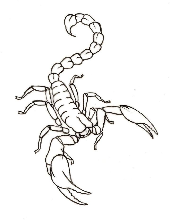 Scorpion Tattoo by ~Metacharis on deviantART
