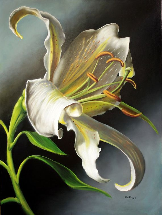 White Lily original flower oil painting by artist Delmus Phelps, 30 X 40 on linen free shipping US