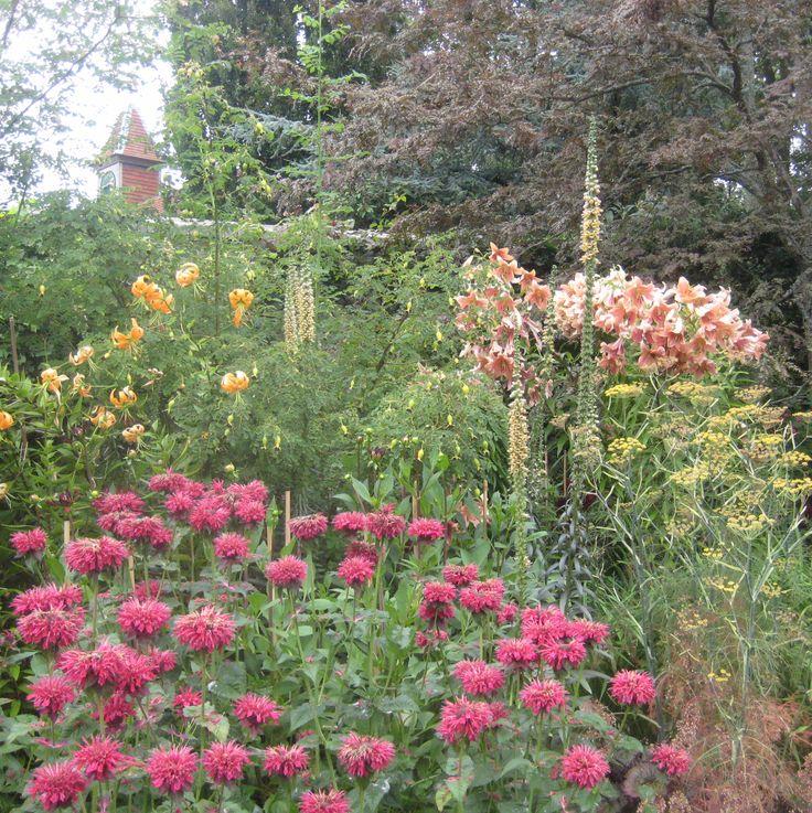 Pashley Manor Gardens Ticehurst East Sus