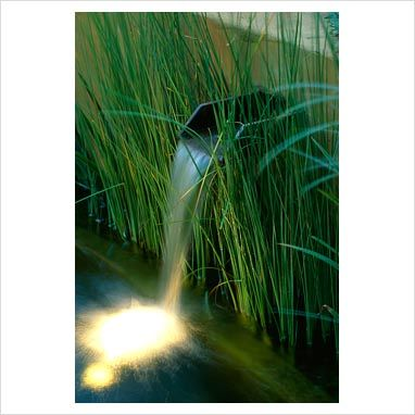 I like the water cascading through the grasses