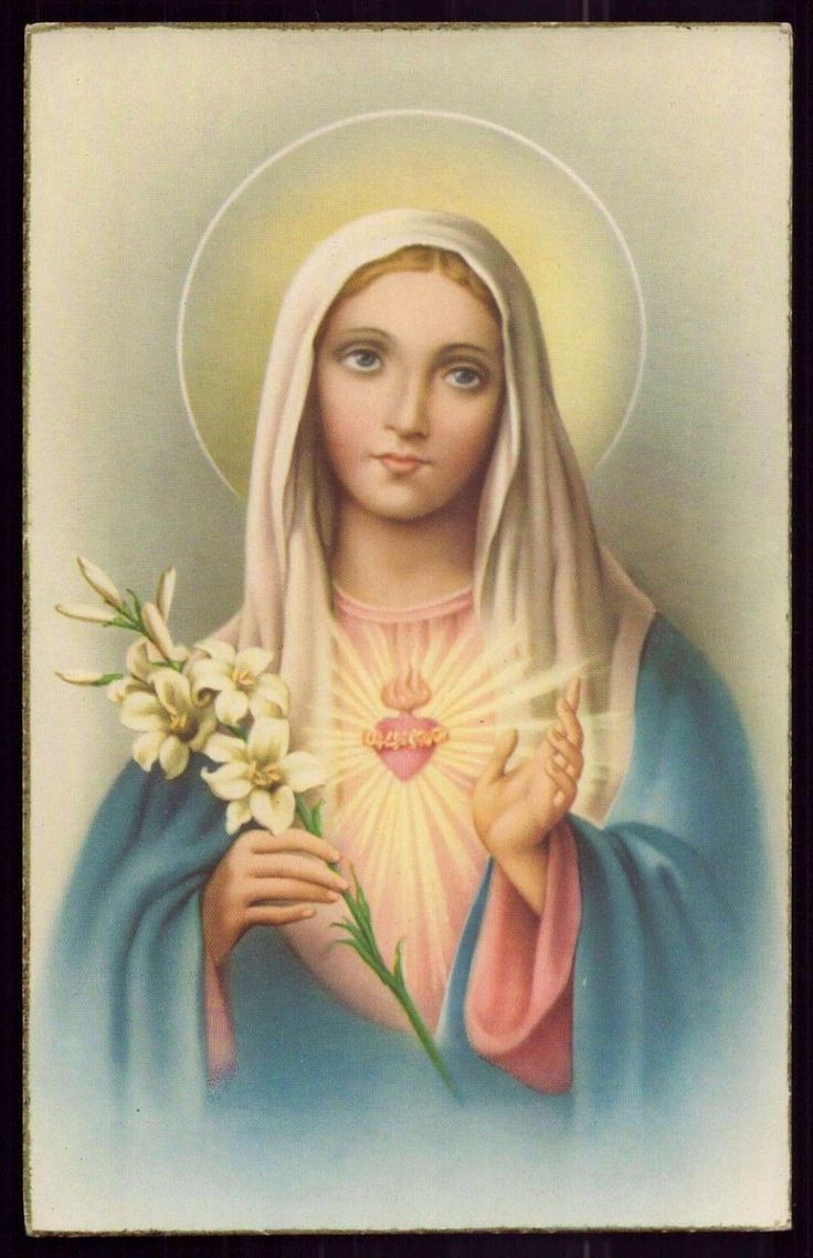 SACRED HEART OF MARY w/ LILIES Vtg GOLD EDGE HOLY CARD POSTCARD FOR SALE • $5.00 • See Photos! Money Back Guarantee. Track Page Views With Auctiva's FREE Counter 401414666463