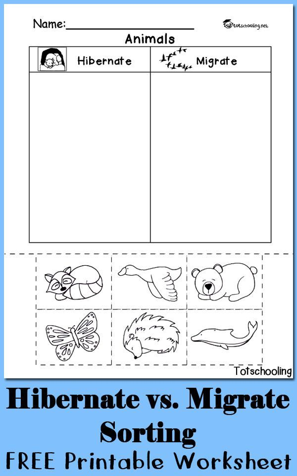 Teach child how to read: Free Cut And Paste Sorting ...