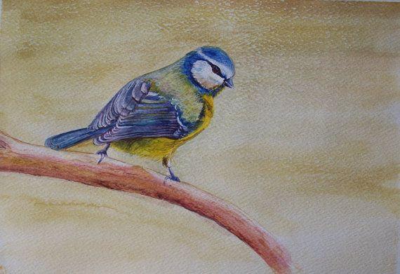 Uccello acquerello su carta dipinto originale di Stellangelo