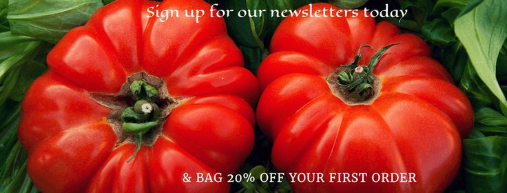 Do you want 20% off your first order with us? sign up to our newsletter today and we will send you a discount code for 20% off your first tomato order with us  Our newsletters are full of offers, great hints and tips and useful articles click here to sign up http://eepurl.com/djuDTz