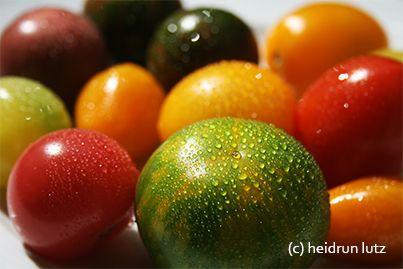 Alte Gartenschätze & wildes Gemüse: Tomaten