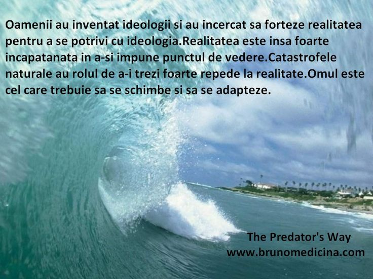People have invented ideology and tried to force reality to fit the ideology..The man is the one who has to wake up to reality and to adapt  - Bruno Medicina  http://www.traininguri.ro/predator-selling/ https://www.facebook.com/bruno.medicina.1?fref=ts http://www.brunomedicina.com/