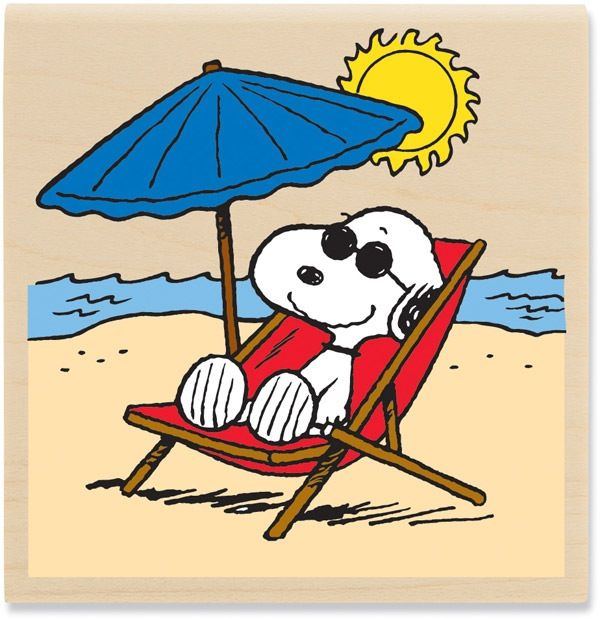 Sun beach relax