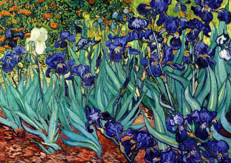 Irisar van Gogh