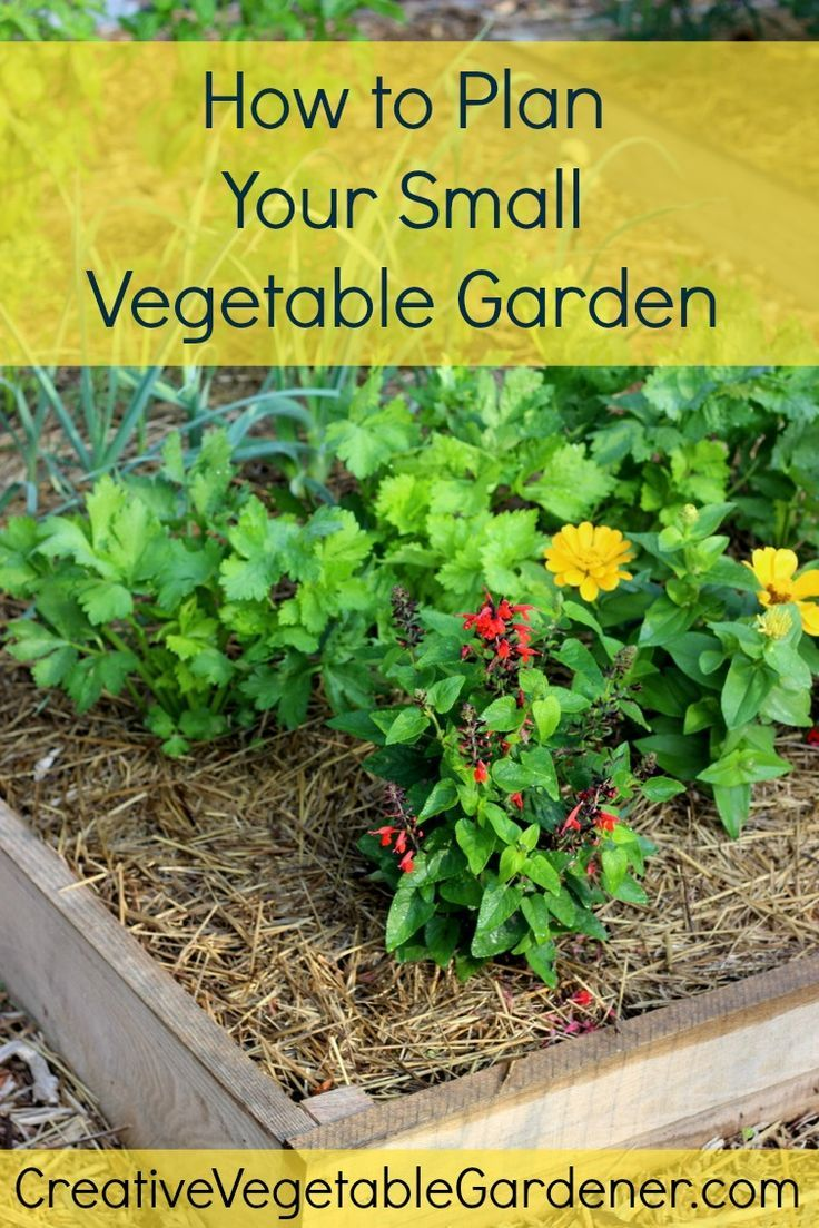 1874 Best Bloggers' Best Garden Ideas Images On Pinterest