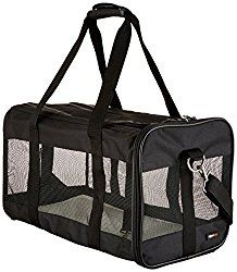 Best Dog Carrier Bag: Reviews & Buyer's Guide