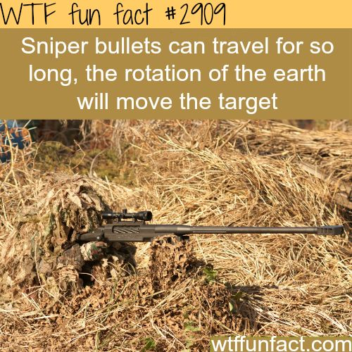 How far can a sniper bullet travel? -  WTF fun facts