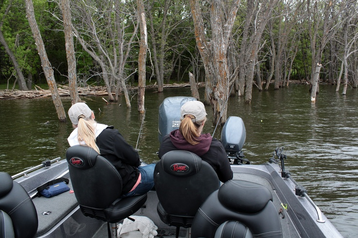 Fishing devil 39 s lake north dakota 39 s flooded timber is both for North dakota fishing