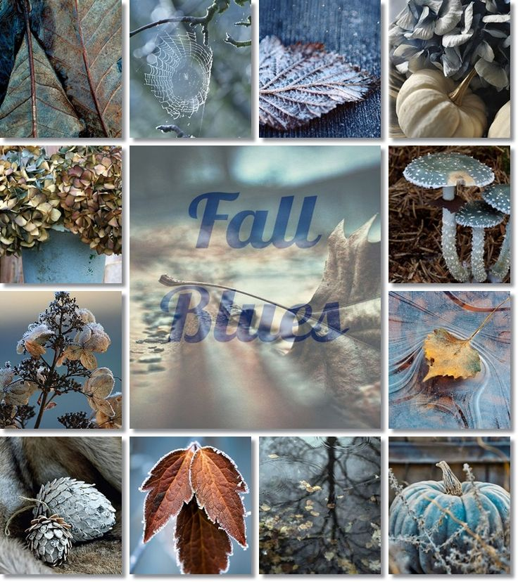 23-9-15 wed. Autumn Equinox. Moodboard autumn by AT
