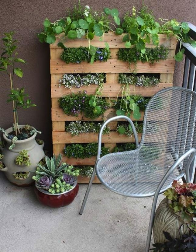 Go vertical with your small space outdoor garden by following this DIY pallet project.