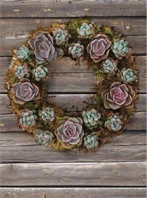succulent wedding gift basket - Google Search