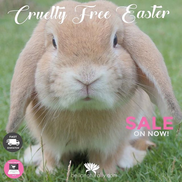 Here are a few reasons why we think you should switch to cruelty free this Easter! 🐇🐰😊🌸 1. We have a GREAT SALE on now and only stock Cruelty Free brands! 2. Cruelty Free cosmetics are less toxic 3. Animal testing is absolutely unnecessary because there are alternatives 4. Cruelty Free caters for all budgets and tastes 5. Cruelty Free extends beyond makeup i.e. brushes and makeup tools #BellaNaturally #greenbeauty #makeup #beauty #naturalbeauty #organicskincare #crueltyfreebeauty…