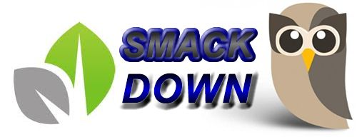 Social Smackdown! Sprout Social vs. Hootsuite, a Critical Look