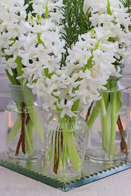 321 best classic white and green flowers images on pinterest group smaller bouquets to make a big impact pictured white tulips hyacinths and rosemary mightylinksfo