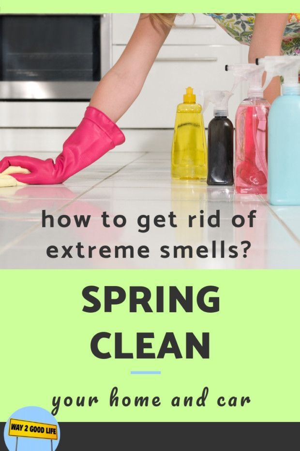 Spring Clean Up Your Home And Car Spring Cleaning Cleaning
