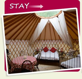 - Yurt holidays, Yurt camping, Yurt holiday, Yurt hire, Yurts Devon, Yurt Devon, Tipi holidays - Yurt Camp Devon & Dartmoor