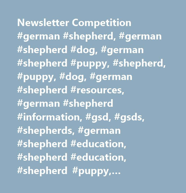 Newsletter Competition #german #shepherd, #german #shepherd #dog, #german #shepherd #puppy, #shepherd, #puppy, #dog, #german #shepherd #resources, #german #shepherd #information, #gsd, #gsds, #shepherds, #german #shepherd #education, #shepherd #education, #shepherd #puppy, #shepherd #dog http://renta.nef2.com/newsletter-competition-german-shepherd-german-shepherd-dog-german-shepherd-puppy-shepherd-puppy-dog-german-shepherd-resources-german-shepherd-information-gsd-gsds-shepher/  # It's never…