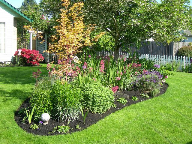 17 best images about berm on pinterest gardens fragrance and japanese lilac tree - Flower and lawn landscaping ideas ...