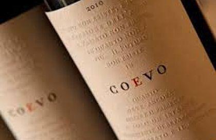 Cecchi, Coevo 2010, 90/100 : dans la lignée des grands vins toscans. Épices douces, charpente fruitée.