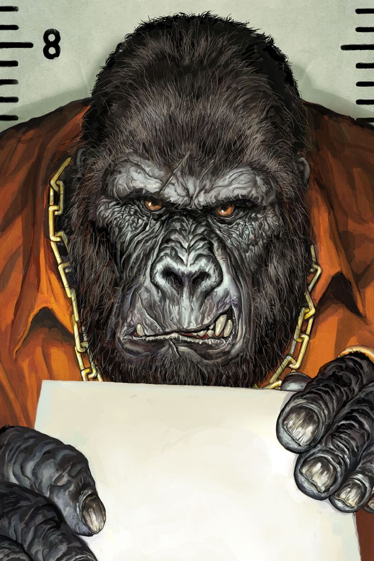 Animal Rights - Gorilla by adijin.deviantart.com on @DeviantArt