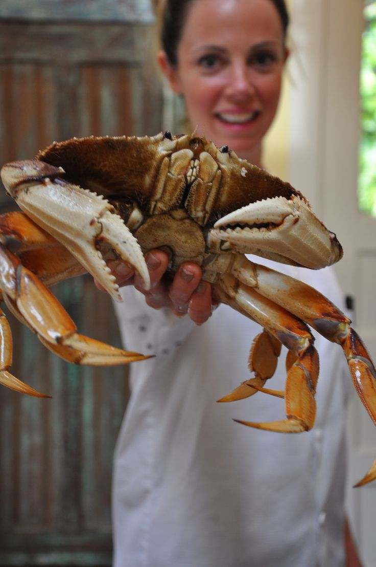 Crab Boil! How to Cook Live Crabs