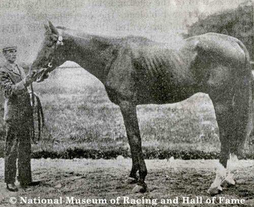 Duke of Magenta. 1878 Belmont Stakes winner. Jockey: W. Hughes. Winning time: 2:43:50