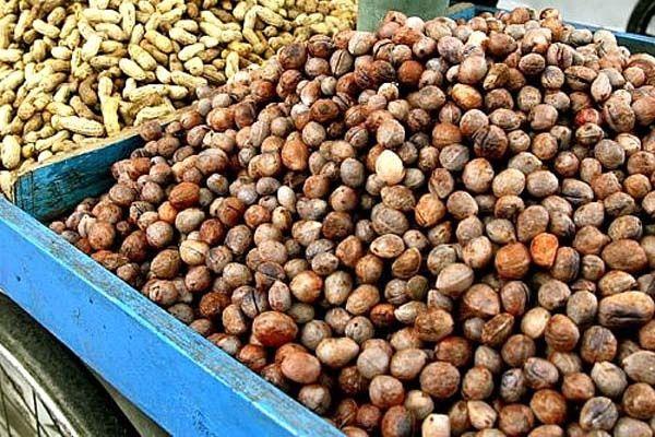 Satu Harapan: Kacang Bogor, Kaya Karbohidrat Rendah Lemak