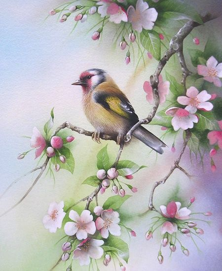 """Goldfinch in Cherry Blossom"""